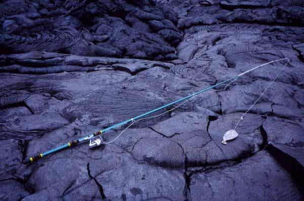 firefishing0001